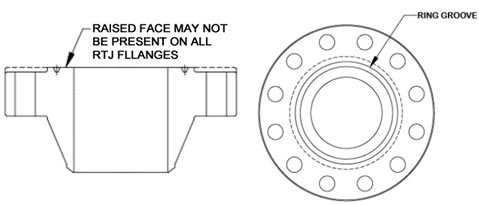 ring type joint flanges dimension